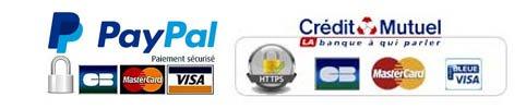 Paiement boutique Phenix Airsoft carte bleu paypal virement bancaire et chèque sont acceptés